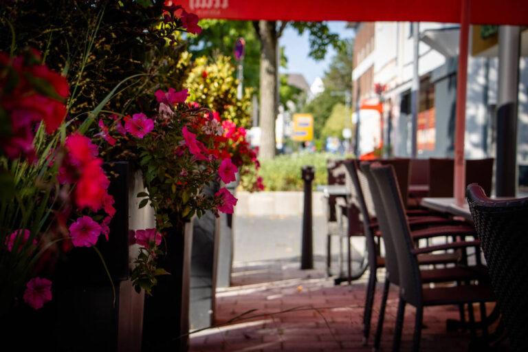 Taverna Kolossos Blumen